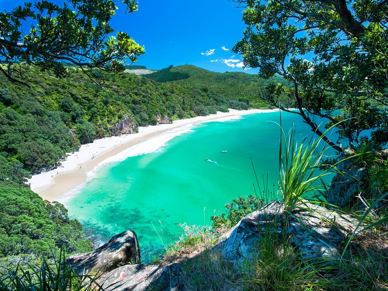 NZ-Best-Beaches-Chums-Bay.jpg