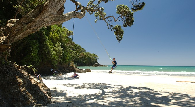 waihi beach swing.jpg
