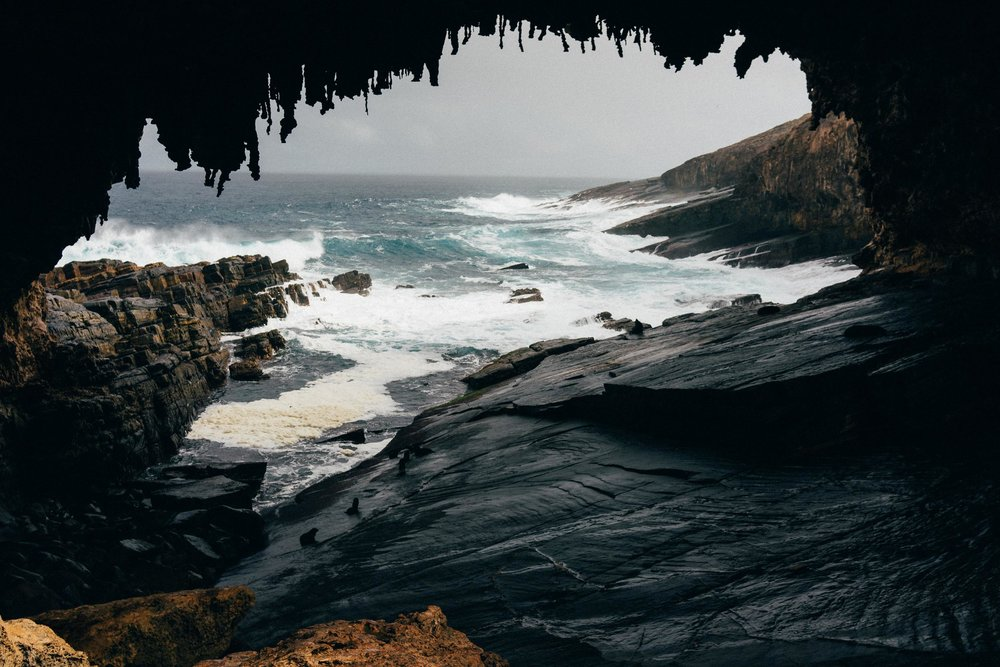 Australia-kangaroo island-02923.jpg