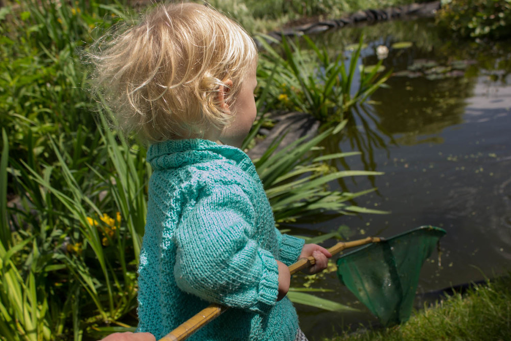 Pond dipping at Abbey Physic garden