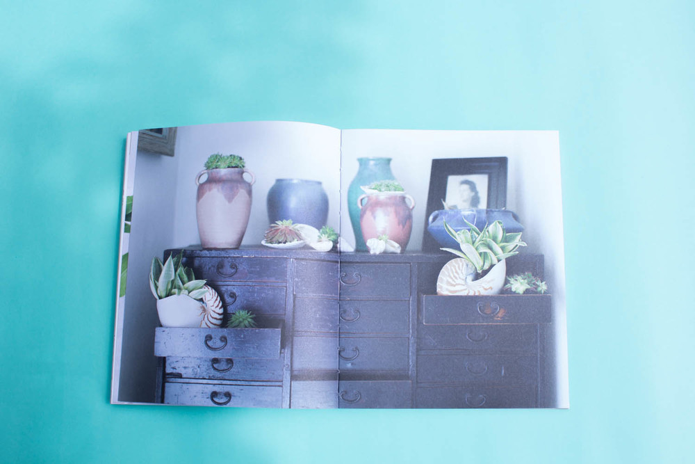 Willow Crossley The Art of Living With Nature