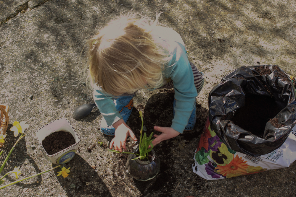 Gardening with kids | Seeds and Stitches blog