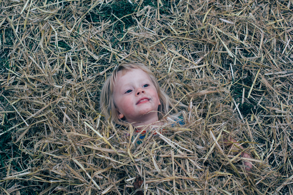 good life exp | Seeds and Stitches blog-7.jpg