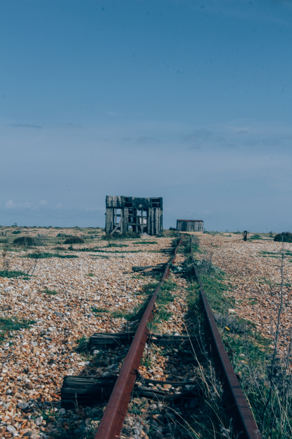 Dungeness | Seeds and Stitches-28.jpg