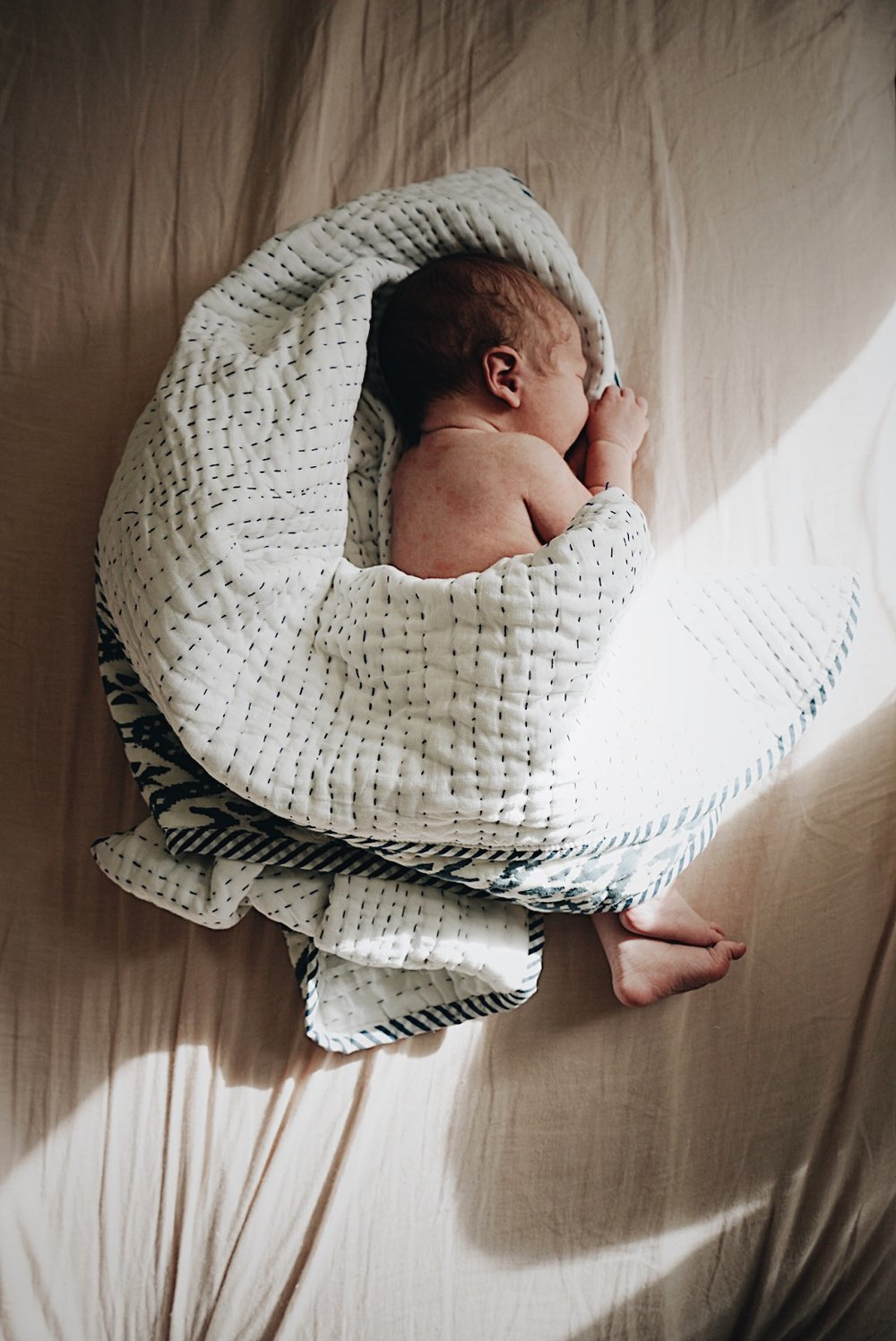 Introducing Auden | Seeds and Stitches blog