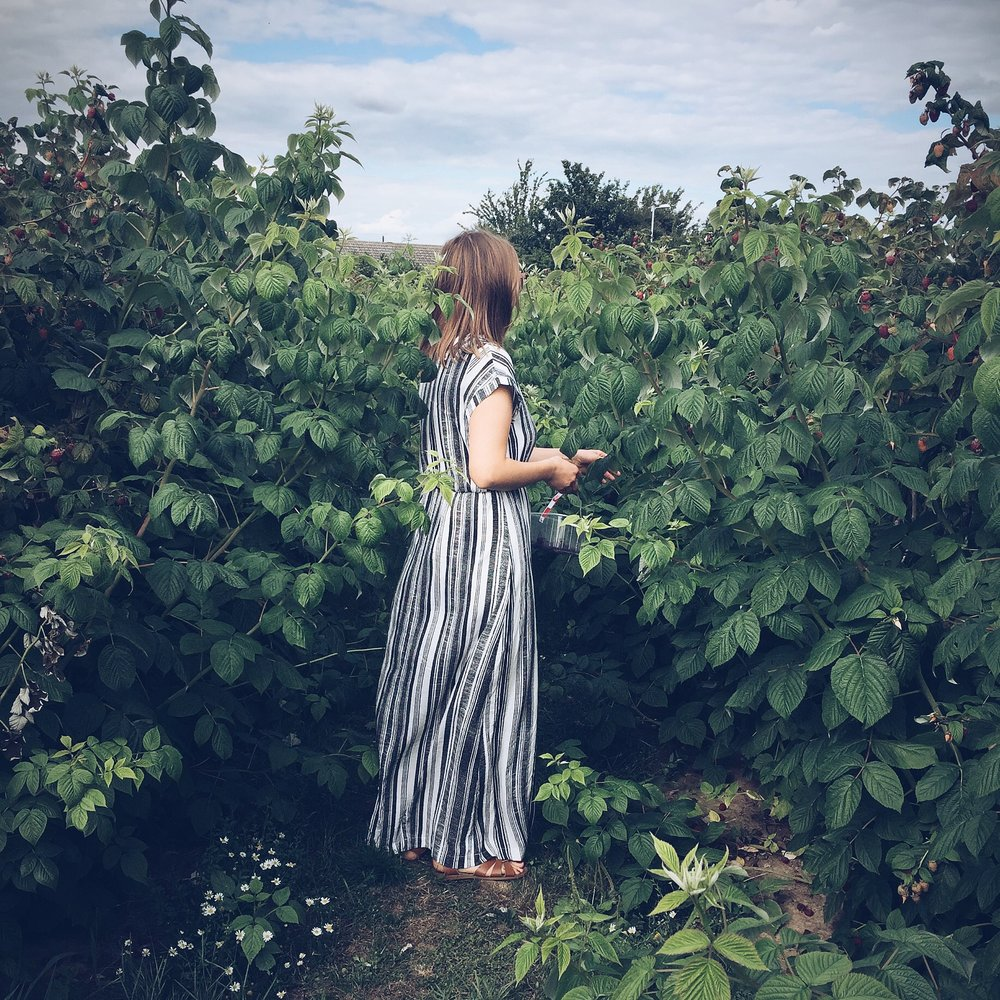 Stitch + Forage; a guide to natural summer living