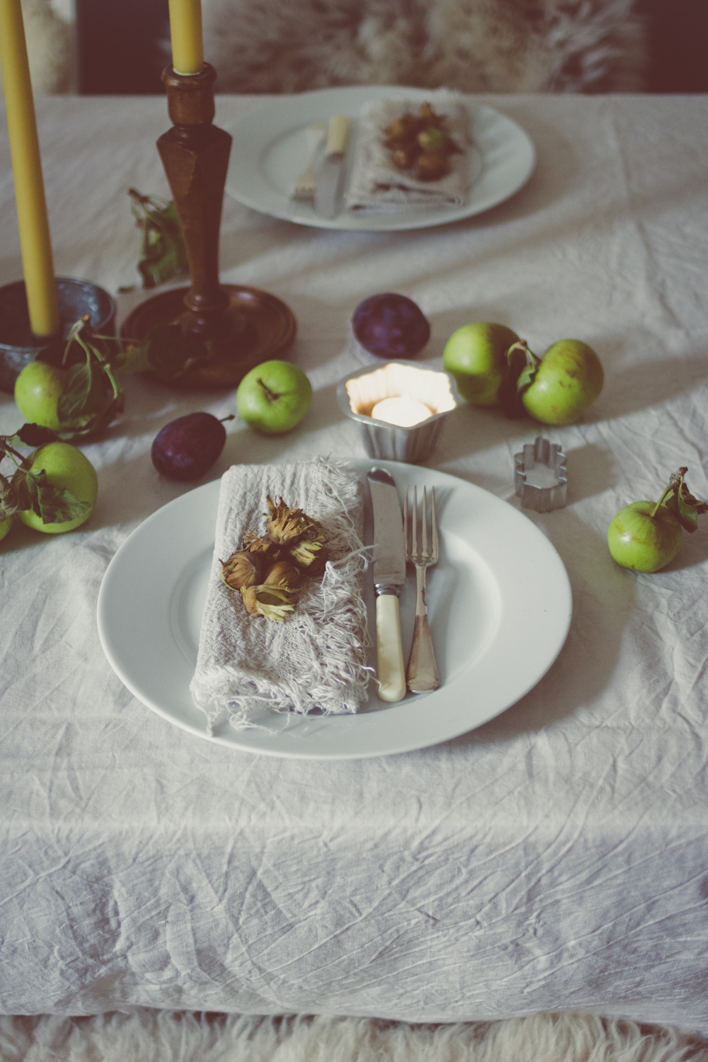 Autumn Dinner Party close up 3.jpg