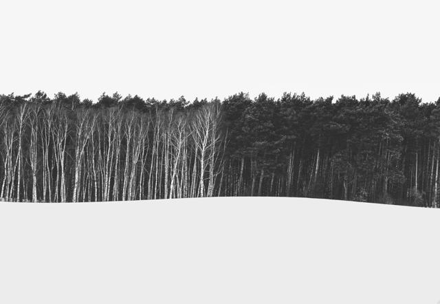 Hartwig Klappert – Waldinseln & Waldfahnen