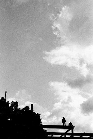 summer sky #1