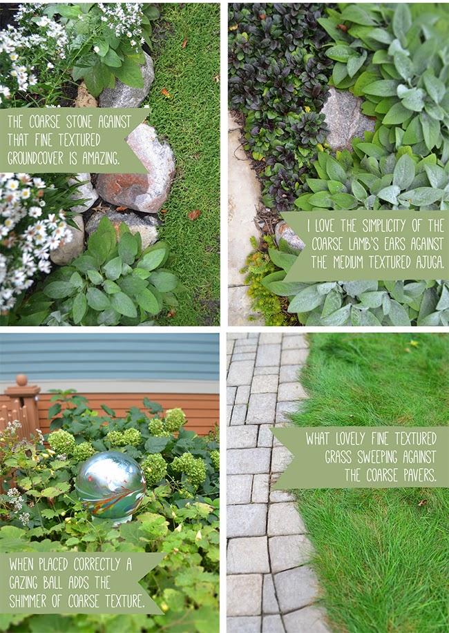 Texture+in+one+Garden2.jpg