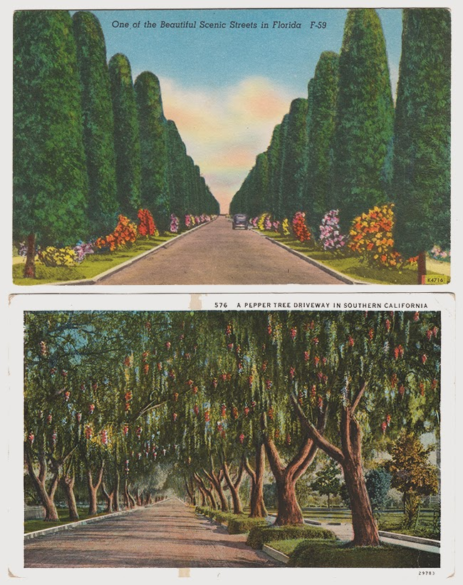 Allee+Postcards.jpg