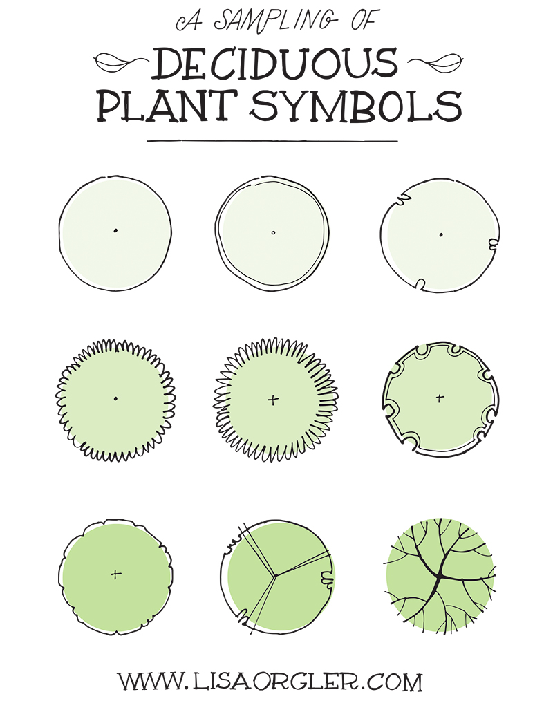 Drawing plant symbols practice sheet for Garden design graphics