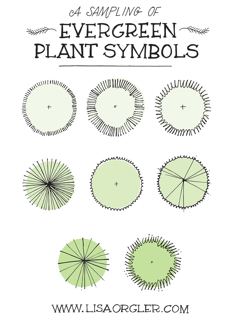 Drawing Plant Symbols 1 on Design Your Own Landscape Plan