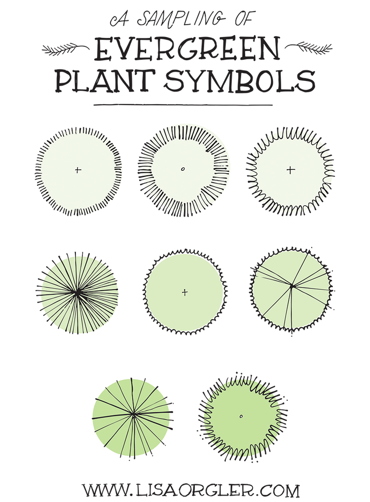 Drawing Plant Symbols Practice Sheet