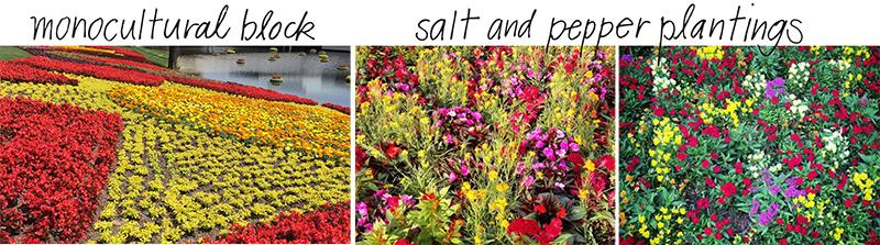 Photos taken at the Epcot International Flower and Garden Festival
