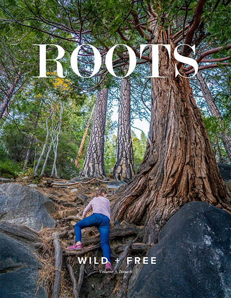 roots_mag_cover.jpg