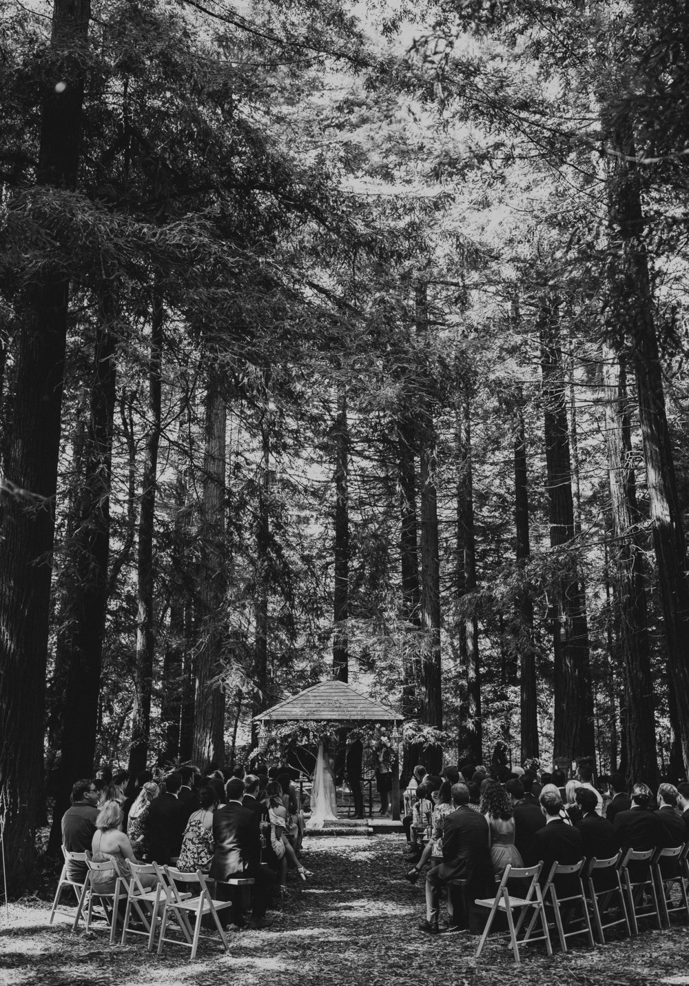 TWO_WOODS_ESTATE_WEDDING_PULBOROUGH_PJ_PHILLIPS_PHOTOGRAPHY_FRAN_&_GEORGE_75.jpg