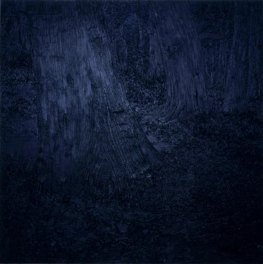 Gillian_Carnegie,_Black_Square