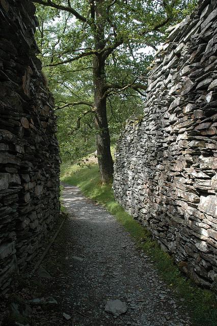 narrow_path.jpg