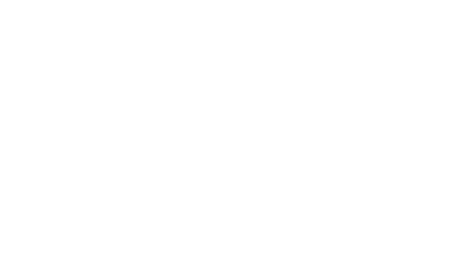 The Mindset Society