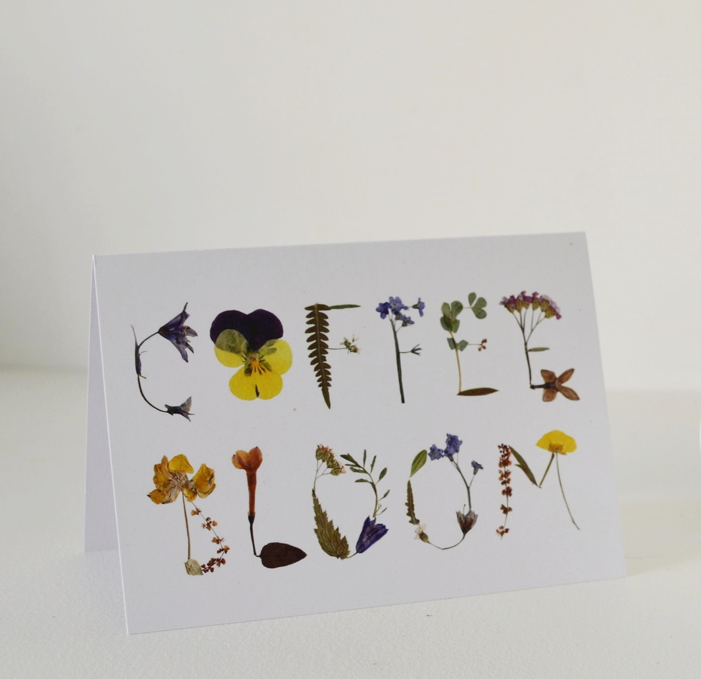 Coffee Bloom Blank Greeting Cards Free Postage In Uk The Girl In