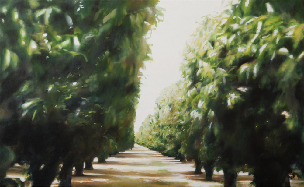 "orchard 4    •   34"" x 56""  oil on canvas  2012"