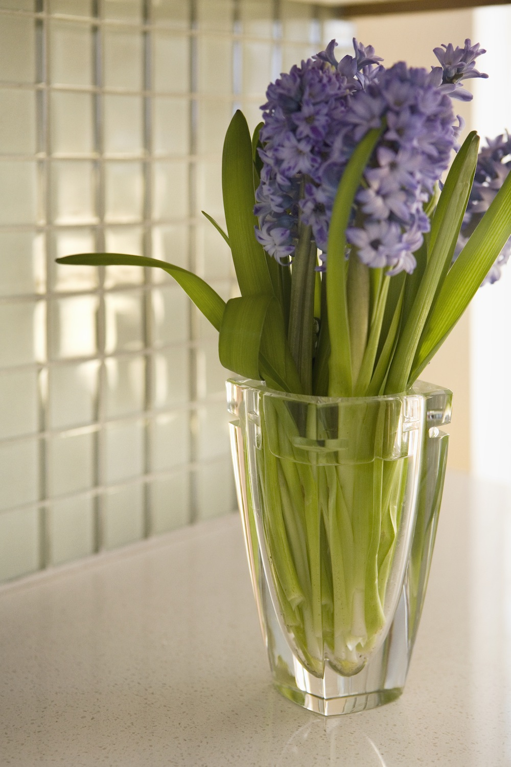 Borg Bath Flower detail.jpg