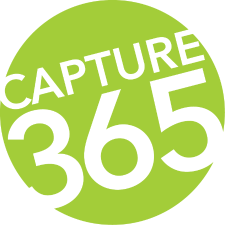 Capture365.png