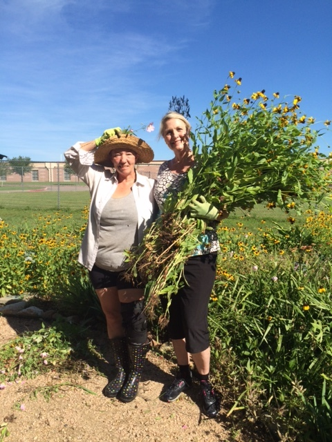 Sandy Batt and Wendy Smith (PTO President) clearing out some of the Rudbeckia.