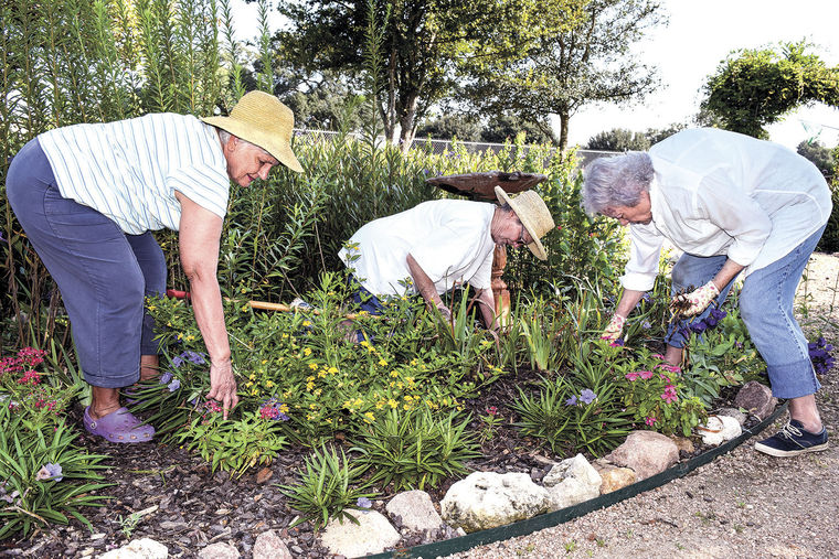 "Thank you to the Brenham Banner Press for keeping up with us at the garden. This was front page the week before activities began for the children in the Butterfly Garden.  ""Bluebonnet Garden Club members Carolyn Sander, Twila Tate and Joy Kenjura remove weeds, poison ivy and other items from the Butterfly Garden so it's ready for children Thursday morning. The club's members come out to the garden every Thursday morning to do work on the garden so children can learn more about the outdoors in a tidy and safe area."""