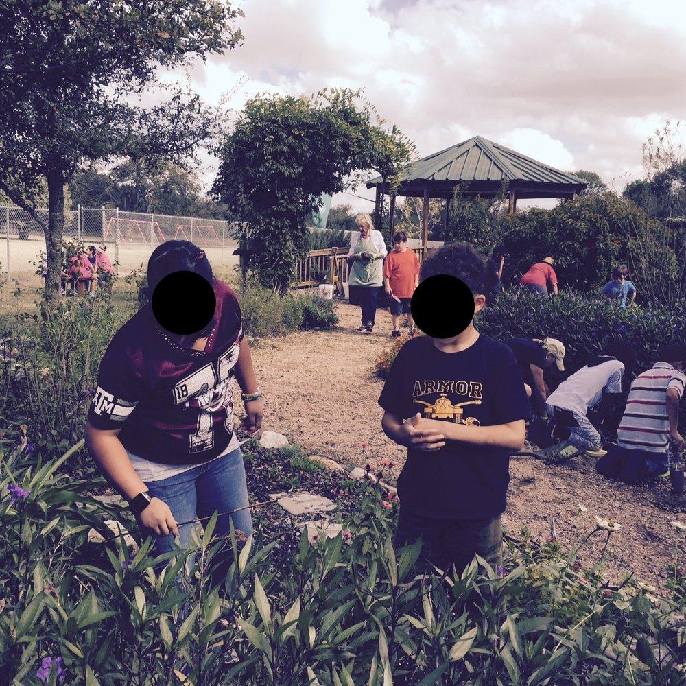 youth gardening butterfly garden fullsizerender 2 jpg