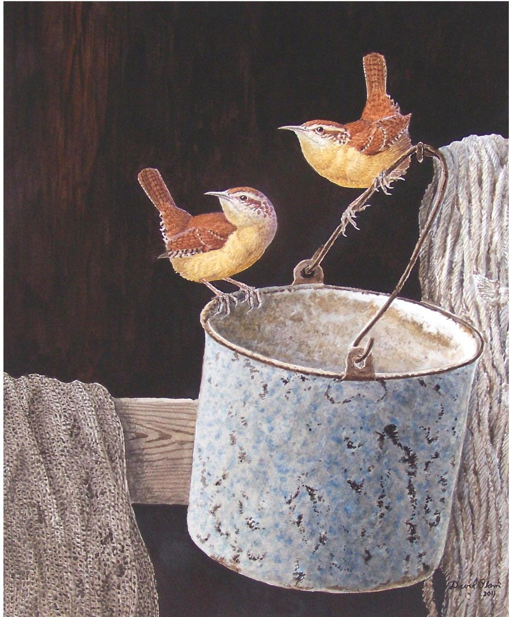 """Carolina Wren Pair on Bucket""   Watercolor by David Plank"