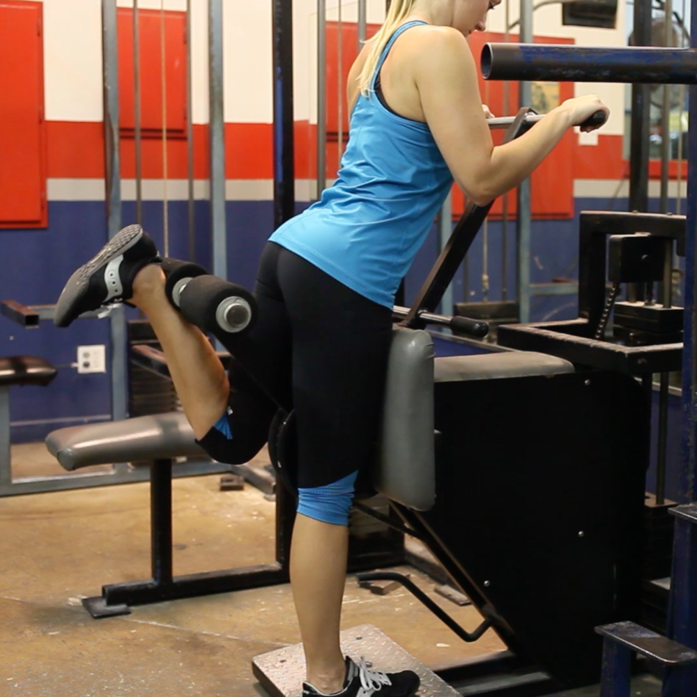 standing hamstring curl machine