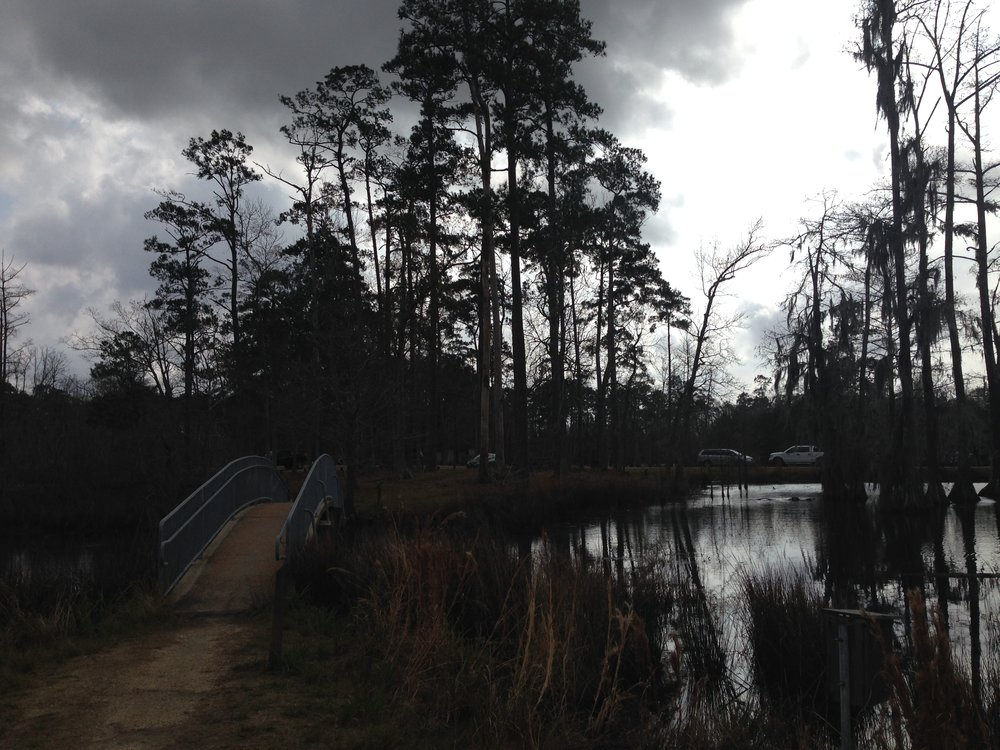 West fork of the Calcasieu River. Home always feels like home.