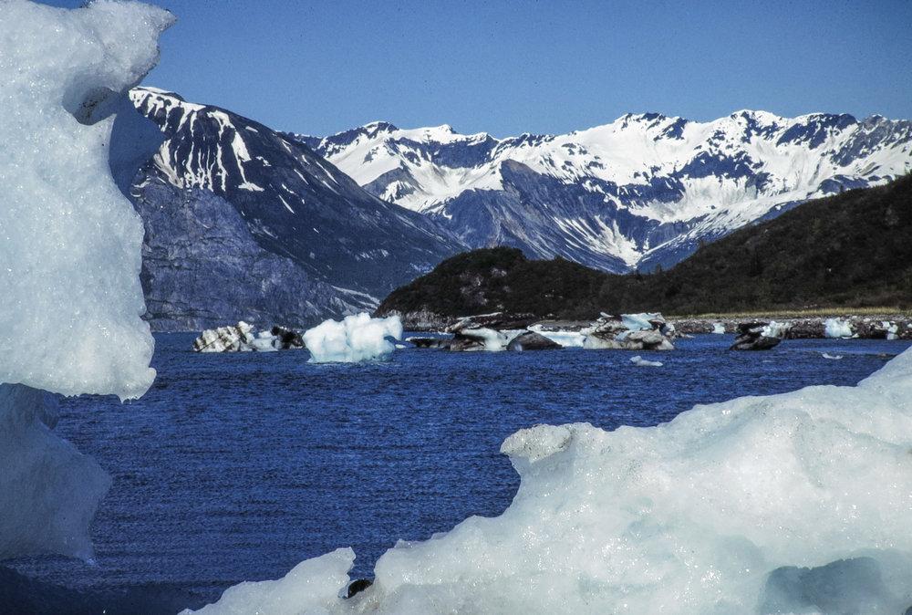 Glacier Bay, 1978