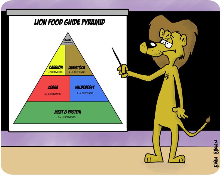 2011-07-19-lion-food.jpg