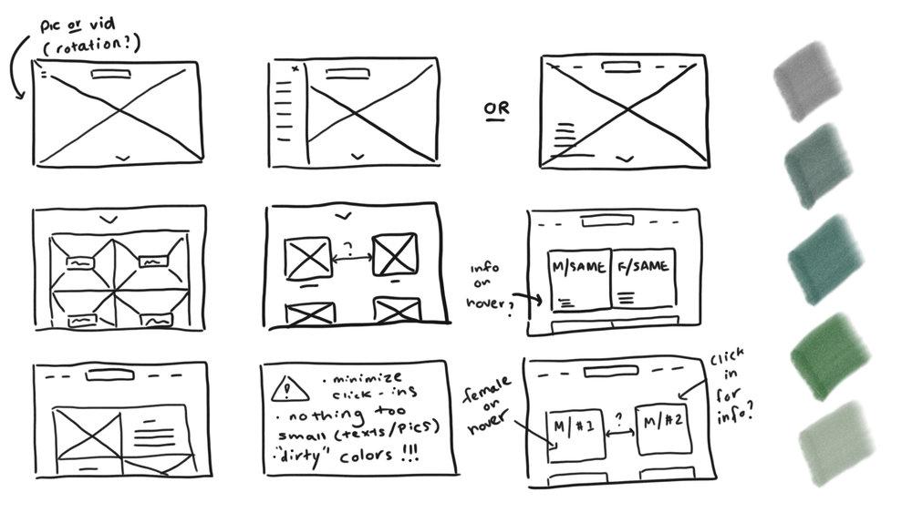 Brainstorm_wireframe.jpg