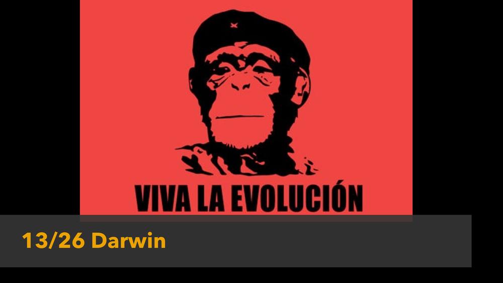 2014 13-14 Darwin.001.jpg