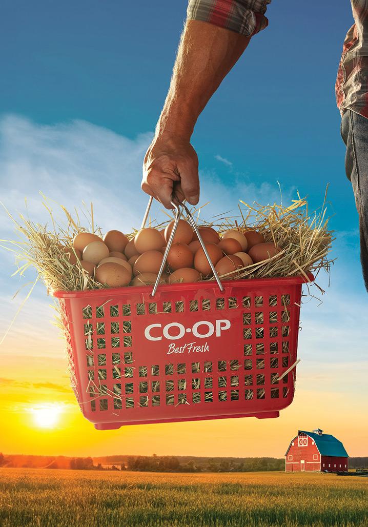 coop-TSAs-eggs.jpg
