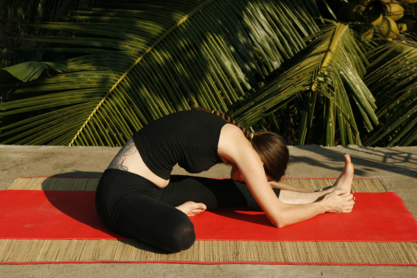 Jānu śīrsāsana (Head to Knee)