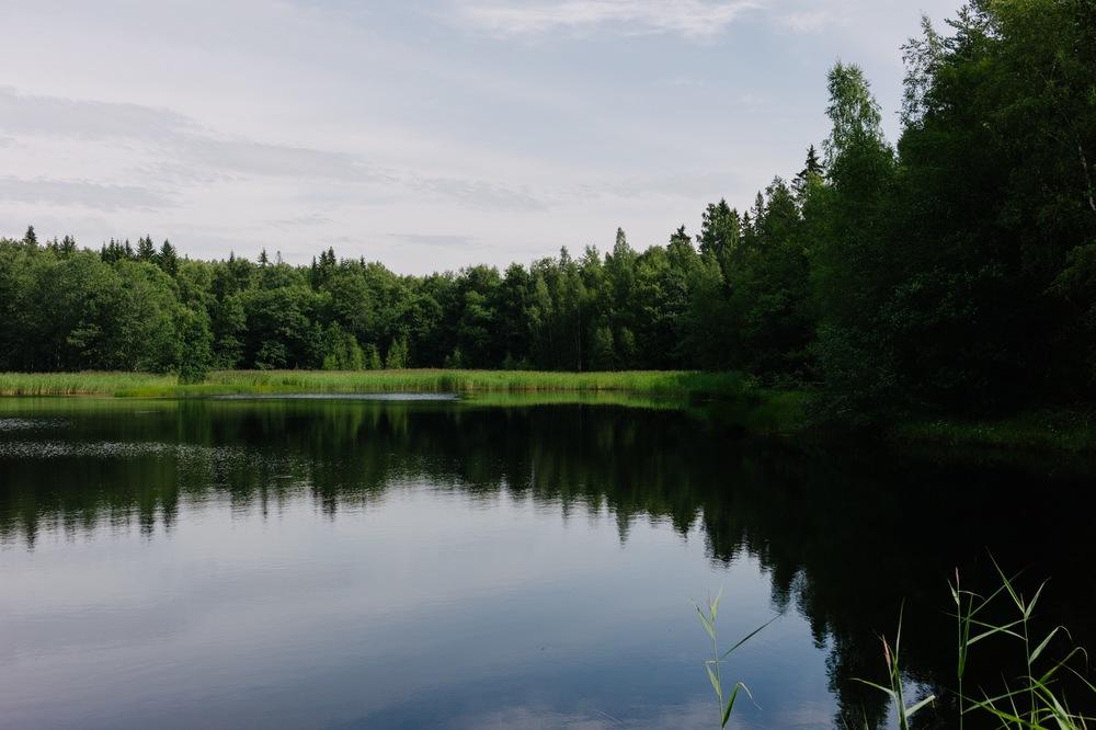 Sweden August 2015-193.jpg