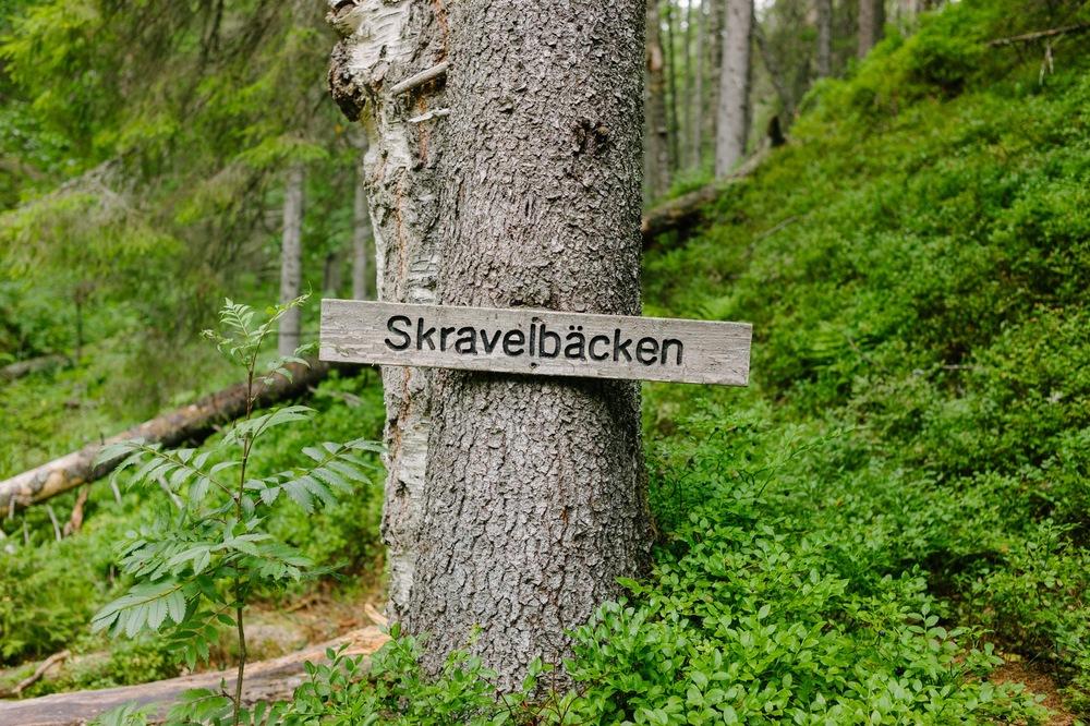 Sweden August 2015-201.jpg
