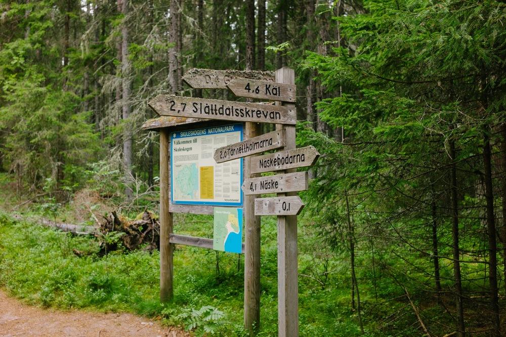 Sweden August 2015-233.jpg