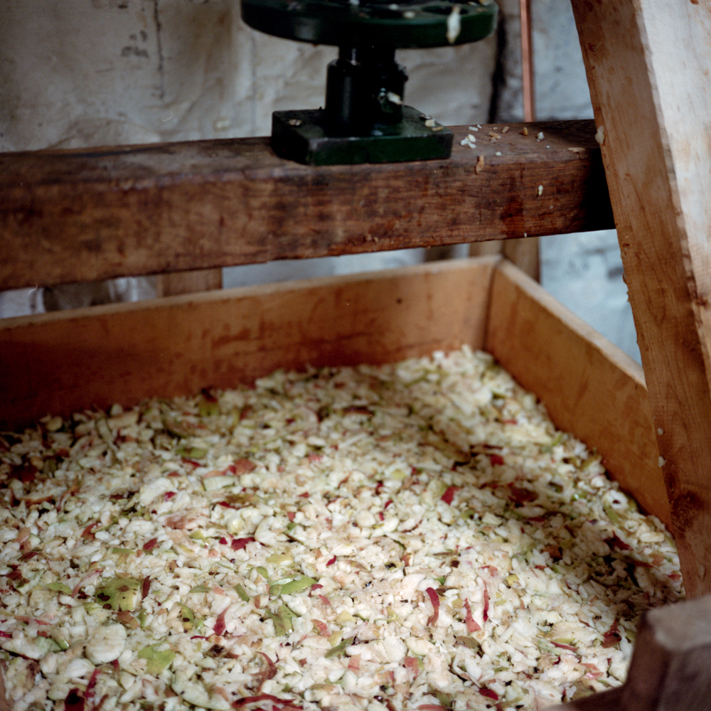Cider_Making-17.jpg