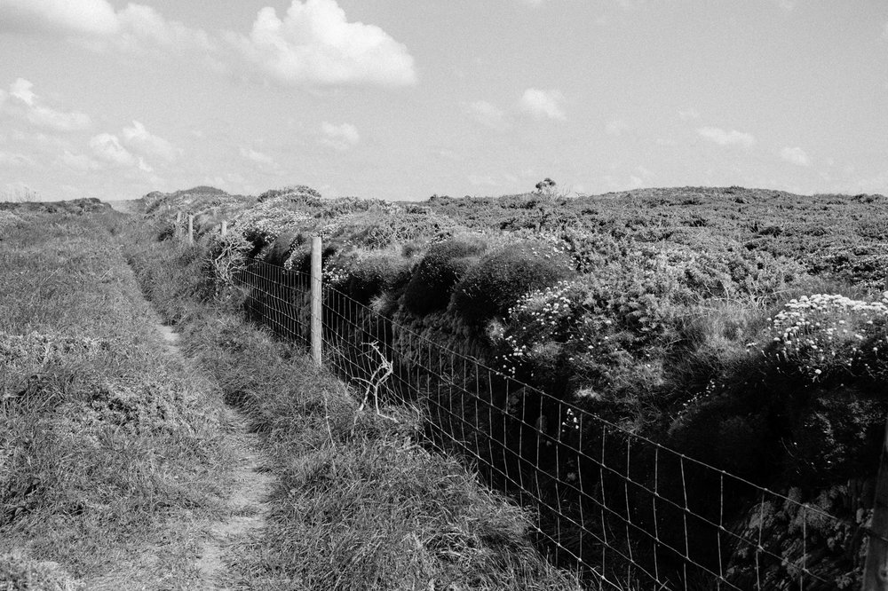 Cornwall April 2017 BW-89.jpg