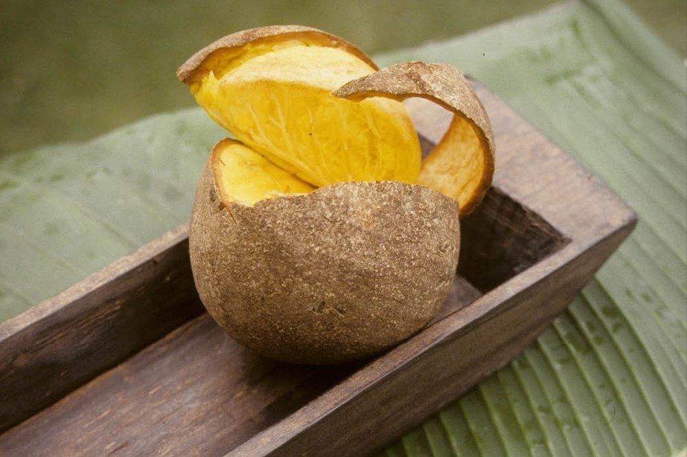 Mamey Sapote fruit