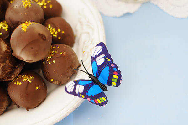 Blue Butterfly Cinderella Birthday Party | Butterfly and Rumballs