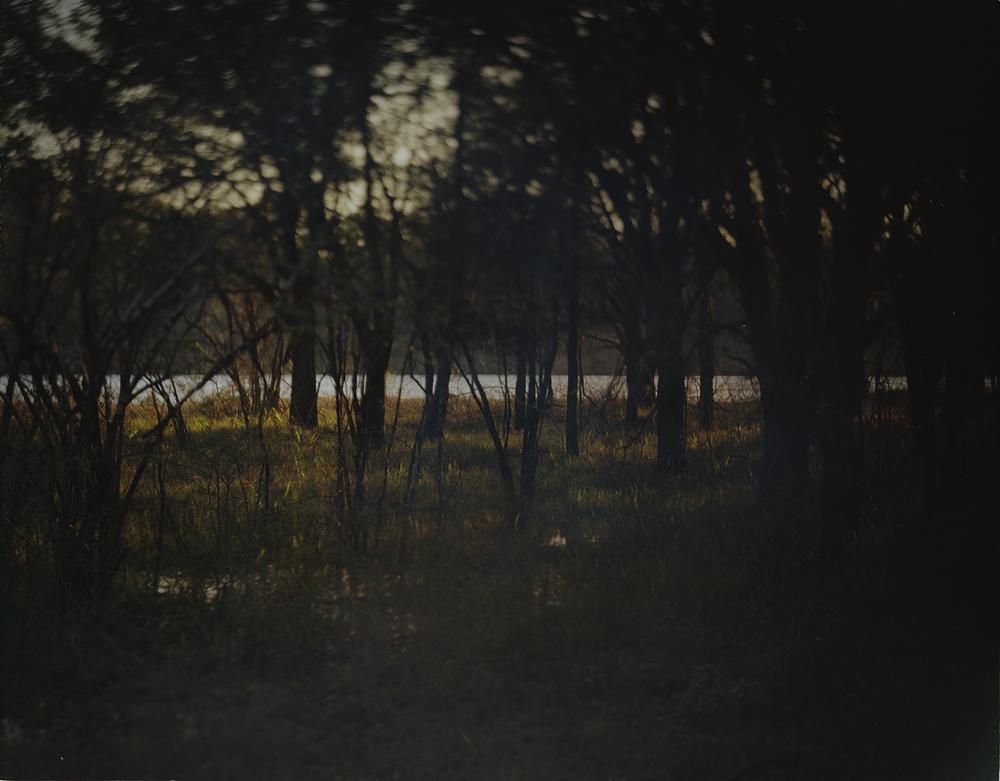 Moody Forrest_Altamaha River_GA.jpg