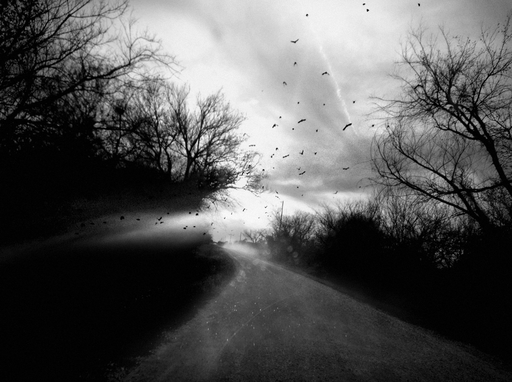 Narrow Escape  from the series  Home by Nightfall  by Angela Bacon-Kidwell