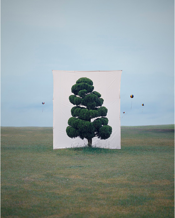 Tree #2, 2006  by Myoung Ho Lee, image I originally fell in love with at Yossi Milo Gallery